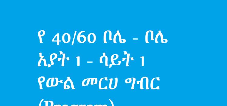 የ 40/60 ቦሌ – ቦሌ አያት 1 – ሳይት 1 የውል መርሀ ግብር(Program)